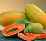Papaya-2B-1-