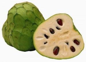 Annona,Papav gibi bitkileri içeren Annonaceae (Anonagiller) familyası içindeki türleri içeren bir cins grubudur. Guatteria cins grubundan sonra, bu familya içindeki en kalabalık cins grubudur.