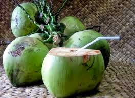 Hindistan cevizi (Coconut) Tropikal bölgelerde yetişir. Meyvesi yenir. hindistan cevizi meyvesinin suyu içilir. veya mayalanarak bir tür palmiye şarabı üretilir. ayrıca beyazı yenebilir. kek ve pasta süslemek için kullanılır. hindistan cevizi ağaçı 20 metre boyu geçmektedir.