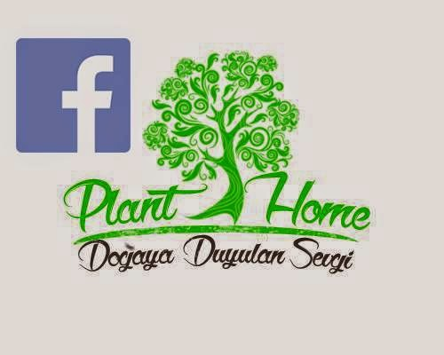 Plant-Home Facebook