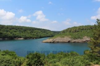 Karadeniz_Sinop_hamsilos_koyu3-min